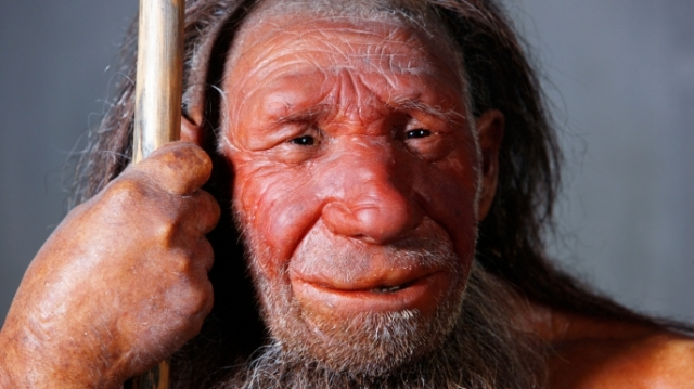 hith-neanderthal-die-out-earlier-e