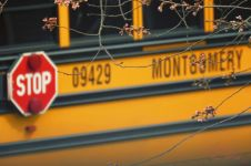 Home - Stop School Bus and Cherry - 1980 - Nik Fix - 3T -Signed