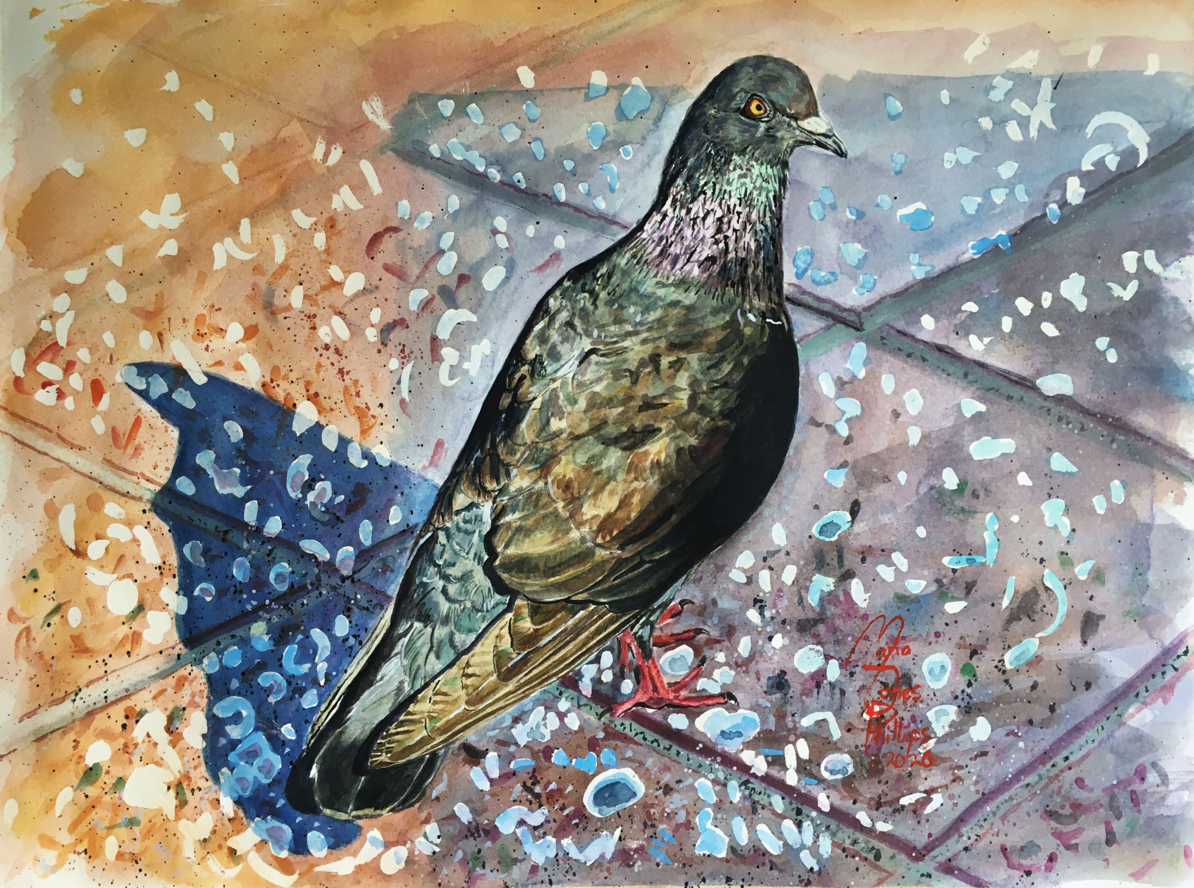 Grumpy Pigeon – Water Media Painting