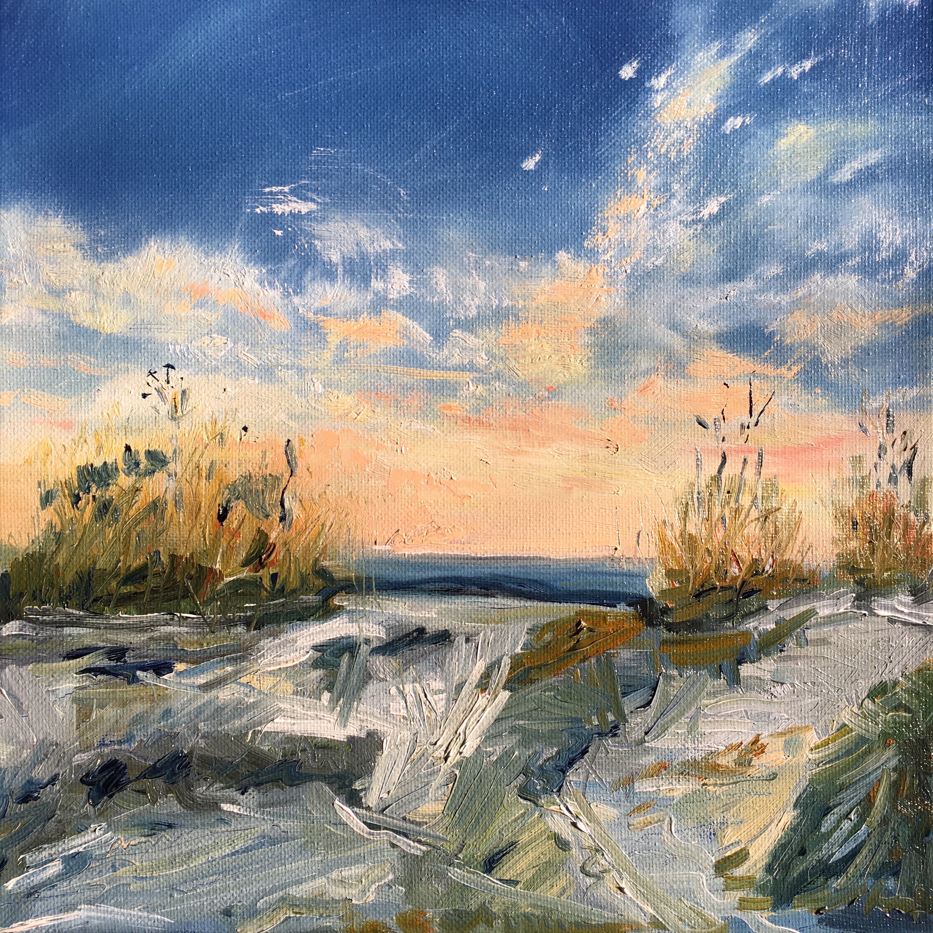 Sketches in Oil – Grasses on a Beach